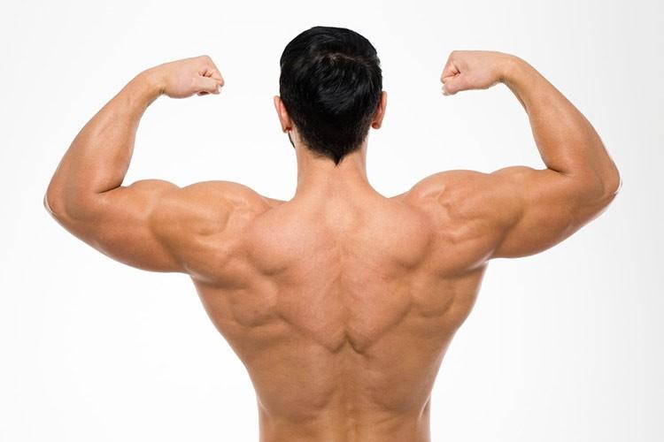 músculos-bicicleta-estatica