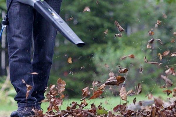 soplador-de-hojas-inalambrico