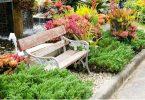 hierbas-de-jardin-comestibles