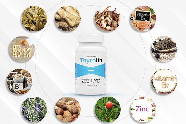 ingredientes del Thyrolin