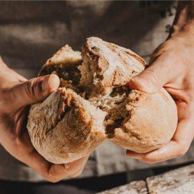 que pan integral es mejor para dieta